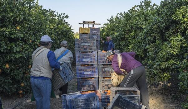 Estas son las novedades a fecha 5 de marzo en la normativa COVID en Andalucía que…