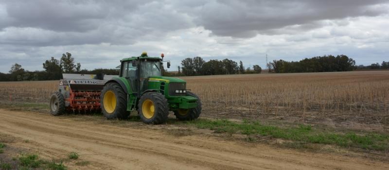 Aclaramos tus dudas sobre los desplazamientos para el sector agrario desde el 30 de octubre al…