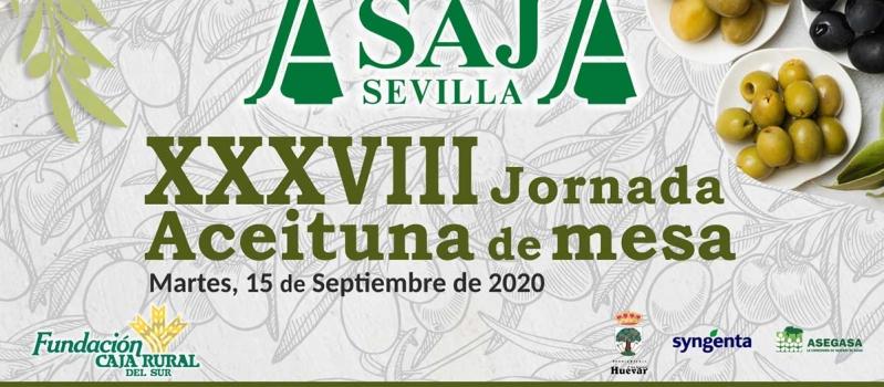 ASAJA-Sevilla celebra hoy martes, 15 de septiembre, su XXXVIII Jornada de Aceituna de Mesa