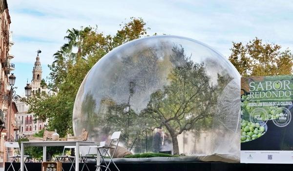 Una cúpula transparente trae el Sabor Redondo al corazón de Sevilla