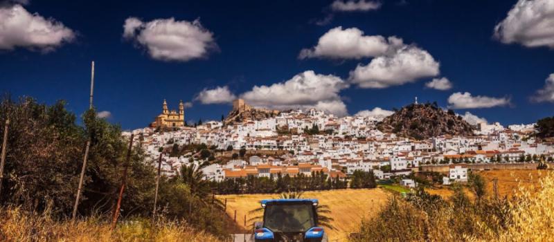 Más de 209.000 agricultores y ganaderos andaluces recibirán a partir de hoy el anticipo de la…