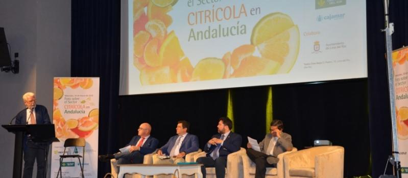 Ricardo Serra representará los agricultores de la UE en el observatorio de mercado de los cítricos