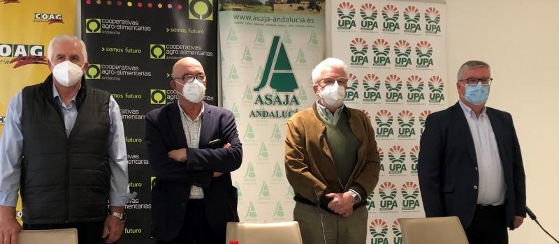 El sector agrario andaluz, desde la unidad de acción, anuncia que vigilará al detalle el desarrollo…