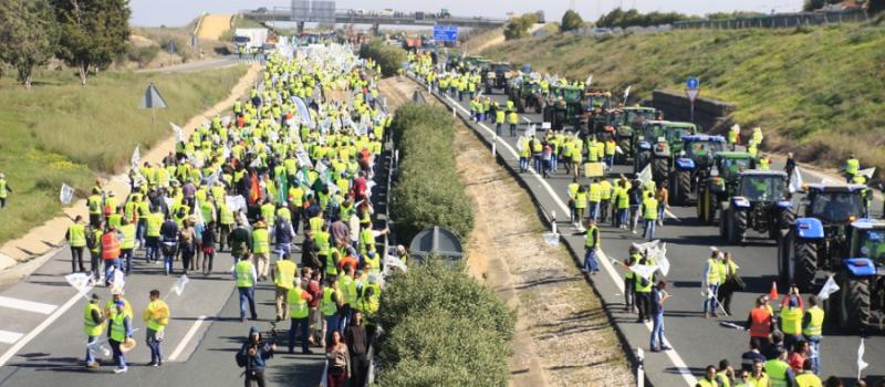 Agricultores y ganaderos de toda Andalucía se manifiestan el jueves en Sevilla para exigir a Luis…