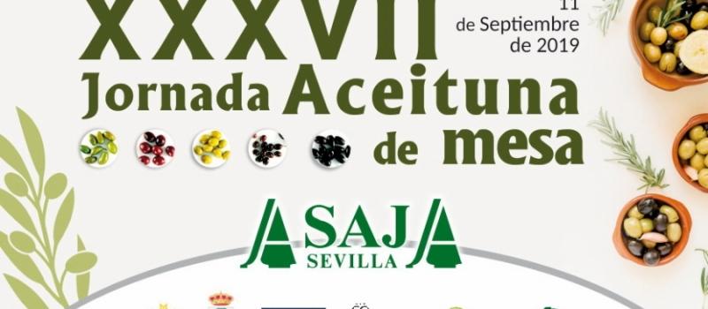 ASAJA-Sevilla celebra el próximo miércoles, 11 de septiembre, su XXXVII Jornada de Aceituna de Mesa