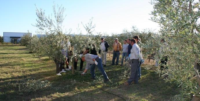 Próximos cursos de formación agraria para comenzar el año