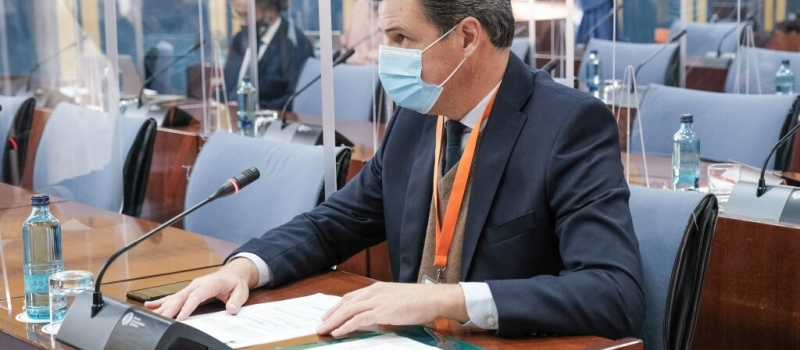 El sector agrario constituirá en 2021 la principal palanca para la reactivación económica de Andalucía